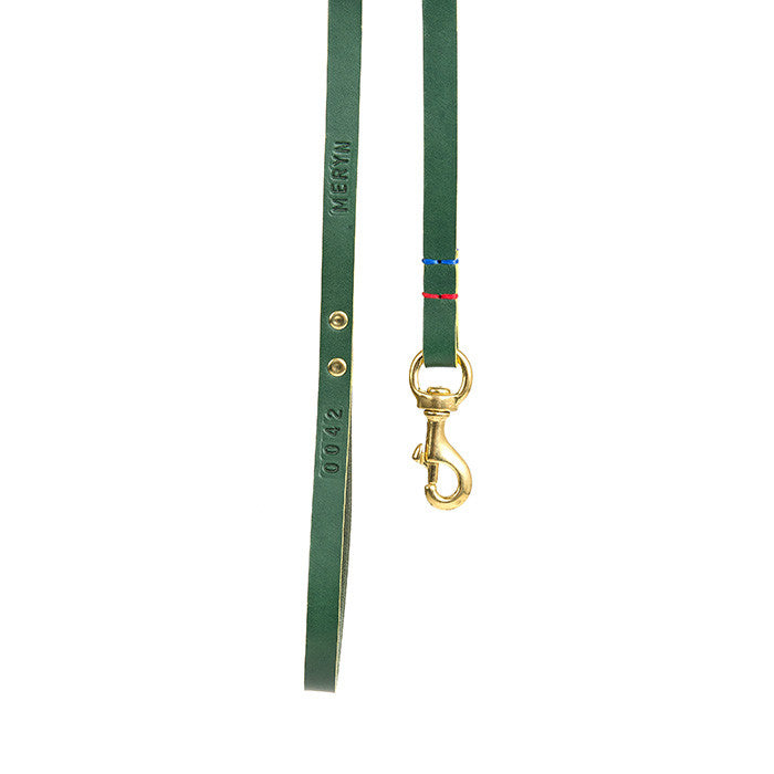 [product _vendor] Leather Dog Dog Lead - Green / Mustard - STYLETAILS