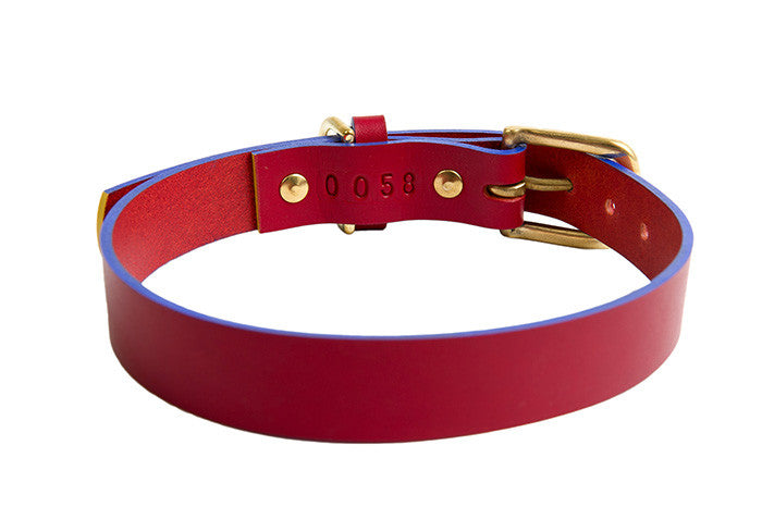 [product _vendor] Mowgli Leather Dog Collar - Red / Blue - STYLETAILS