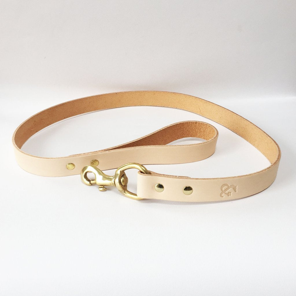 [product _vendor] Leather Dog Lead - STYLETAILS