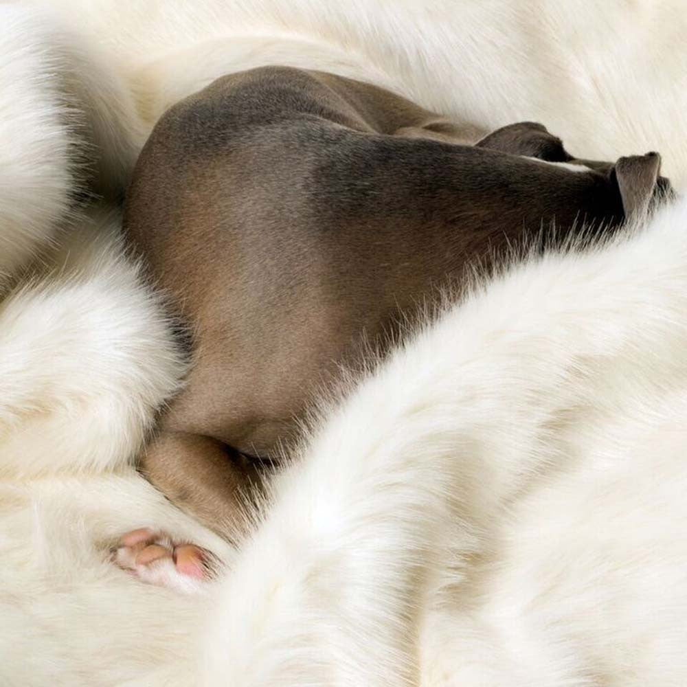 [product _vendor] Polar Bear Faux Fur Dog Blanket - STYLETAILS