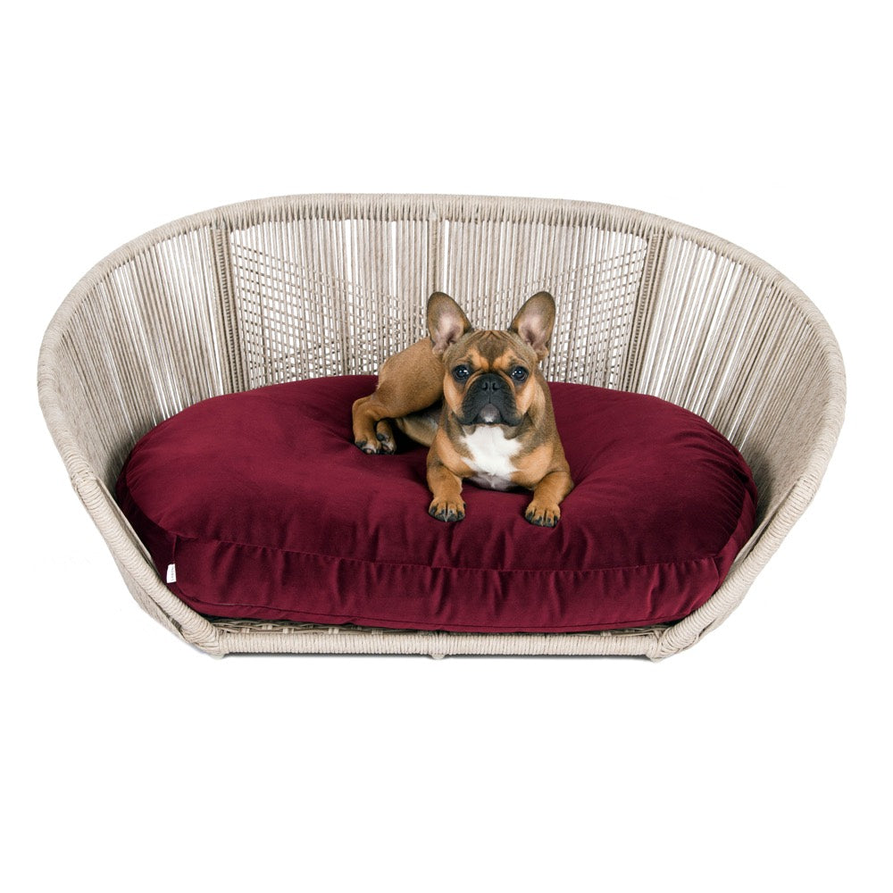 [product _vendor] Vogue Dog Bed - Velvet Cushion - STYLETAILS