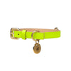 [product _vendor] Neon Dog Collar - STYLETAILS