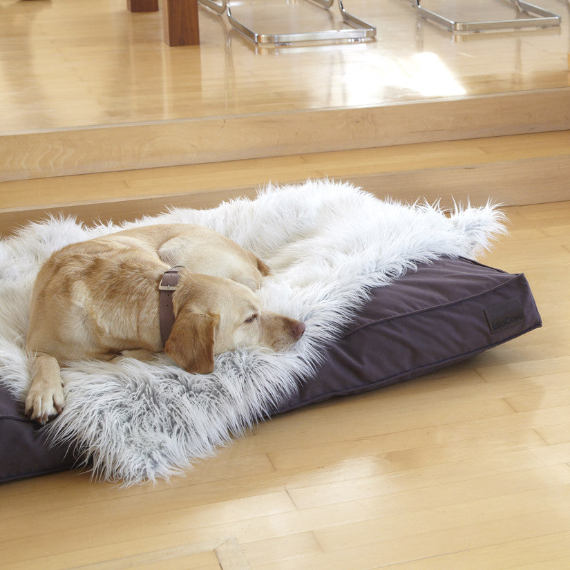 [product _vendor] Capello Faux Fur Dog Blanket - STYLETAILS