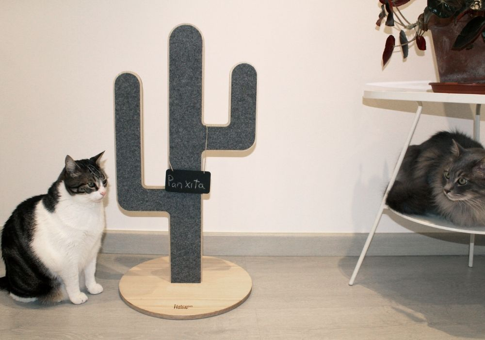 [product _vendor] ITCHIE Cat Scratcher - STYLETAILS