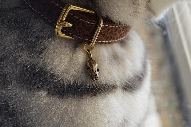 [product _vendor] Skull Cat Collar Charm - Bat - STYLETAILS