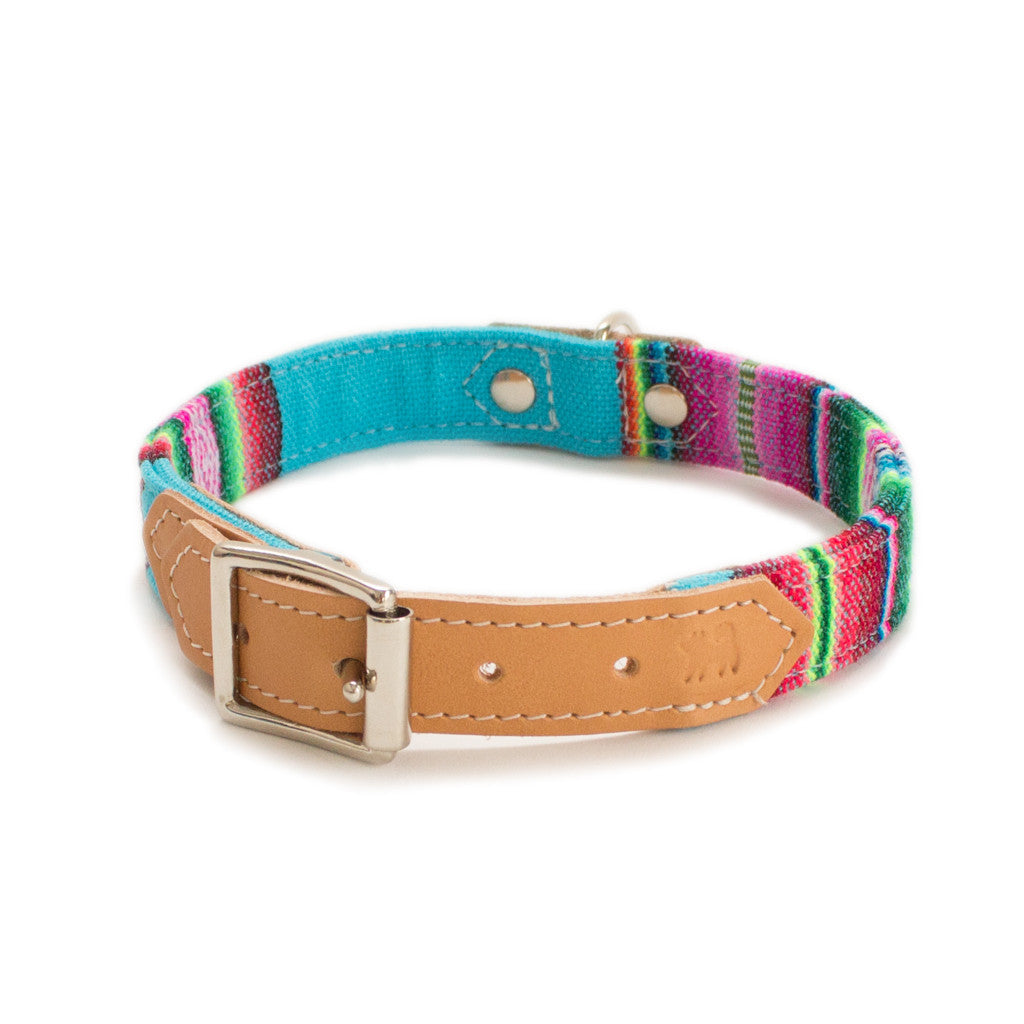 Blue Inca Dog Collar hiro wolf
