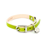 Lime Green Leather Cat Collar with Silver