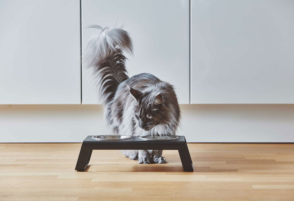 [product _vendor] Desco Cat Feeder - STYLETAILS