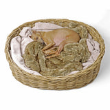 [product _vendor] Greywash Oval Rattan Dog Basket - STYLETAILS