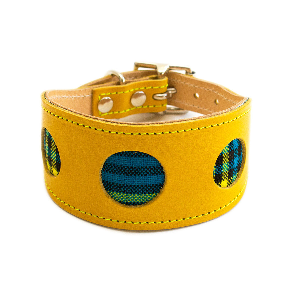 [product _vendor] Shuka Blue Check Hound Collar - STYLETAILS