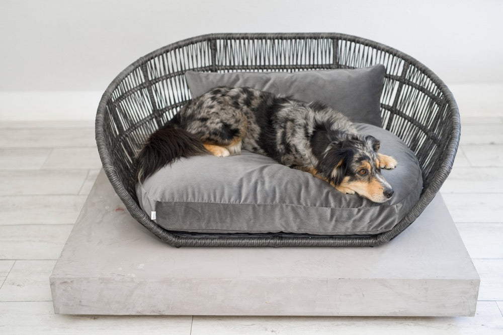 [product _vendor] Prado Dog Bed - Velvet Cushion - STYLETAILS