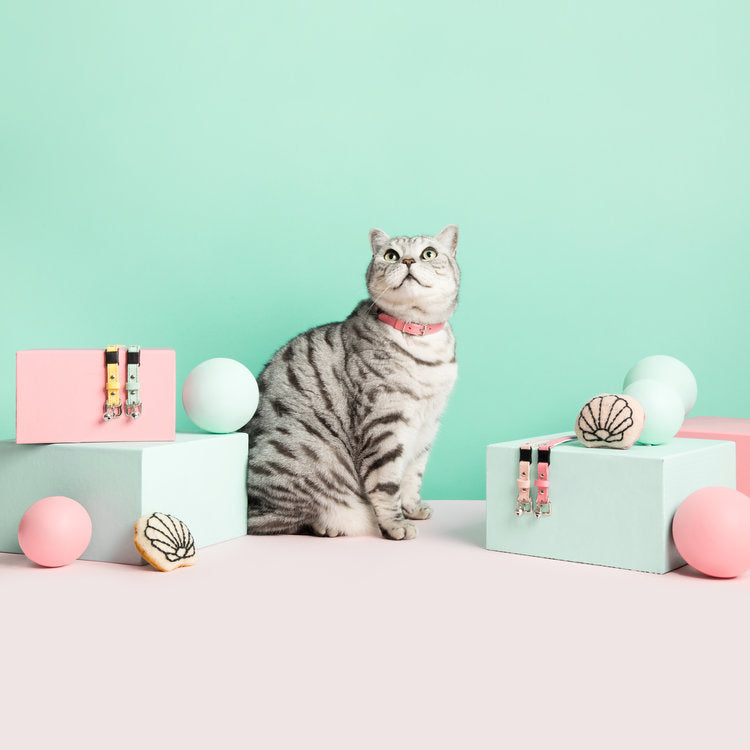 [product _vendor] Pink Oyster Shell Catnip Toy - STYLETAILS