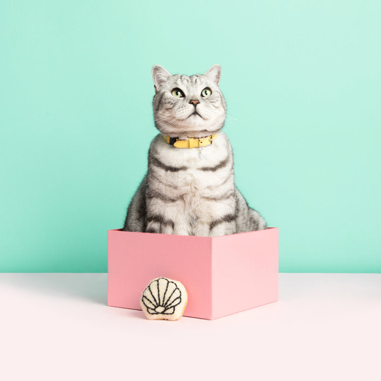 [product _vendor] Lemon Sorbet Yellow Leather Cat Collar - STYLETAILS