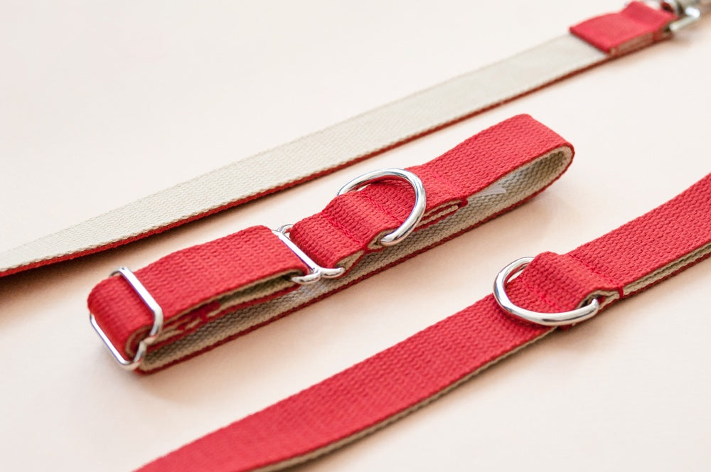 Two Tone Cotton Webbing Dog Collar