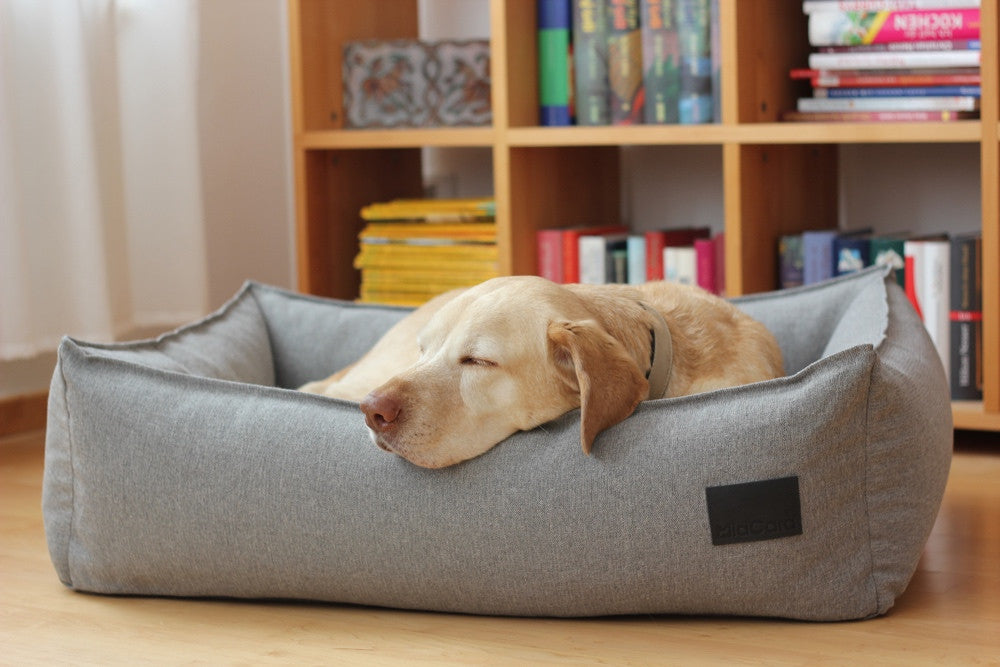 [product _vendor] Nube Box Dog Bed - STYLETAILS
