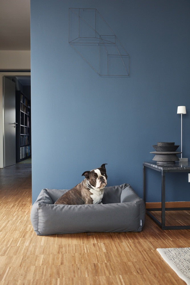 [product _vendor] Scala Box Dog Bed - STYLETAILS