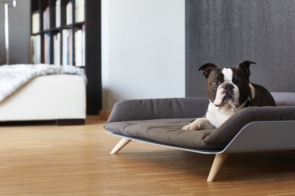 [product _vendor] Letto Dog Day Bed - STYLETAILS