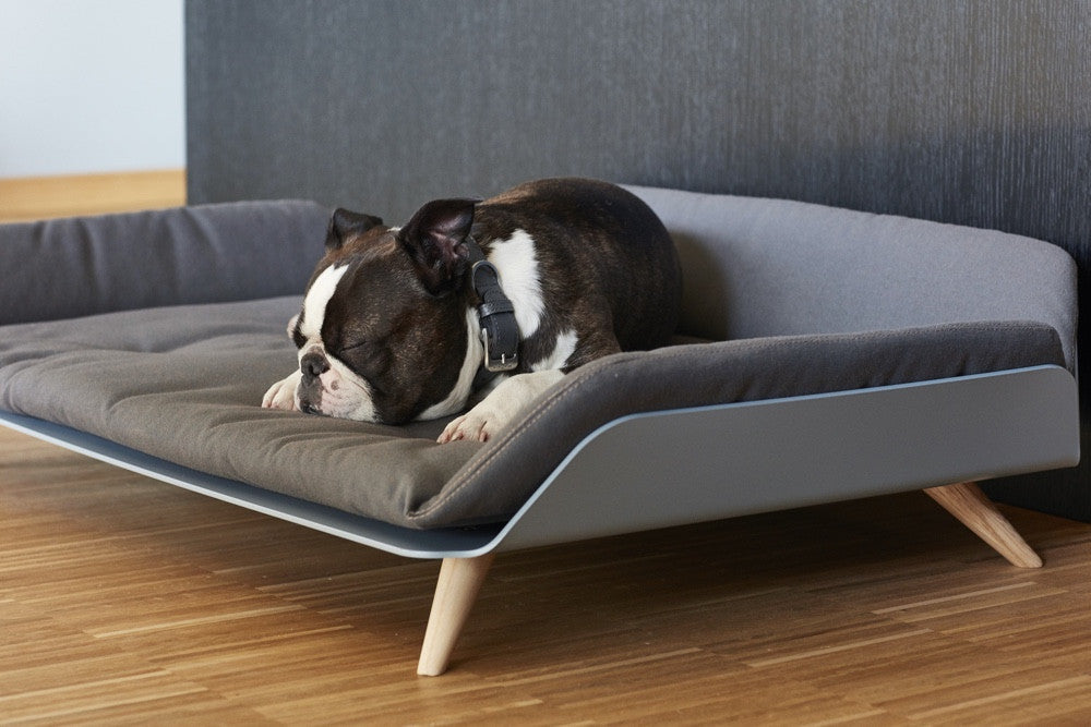 Letto Dog Day Bed Luxury Dog Beds Miacara Styletails