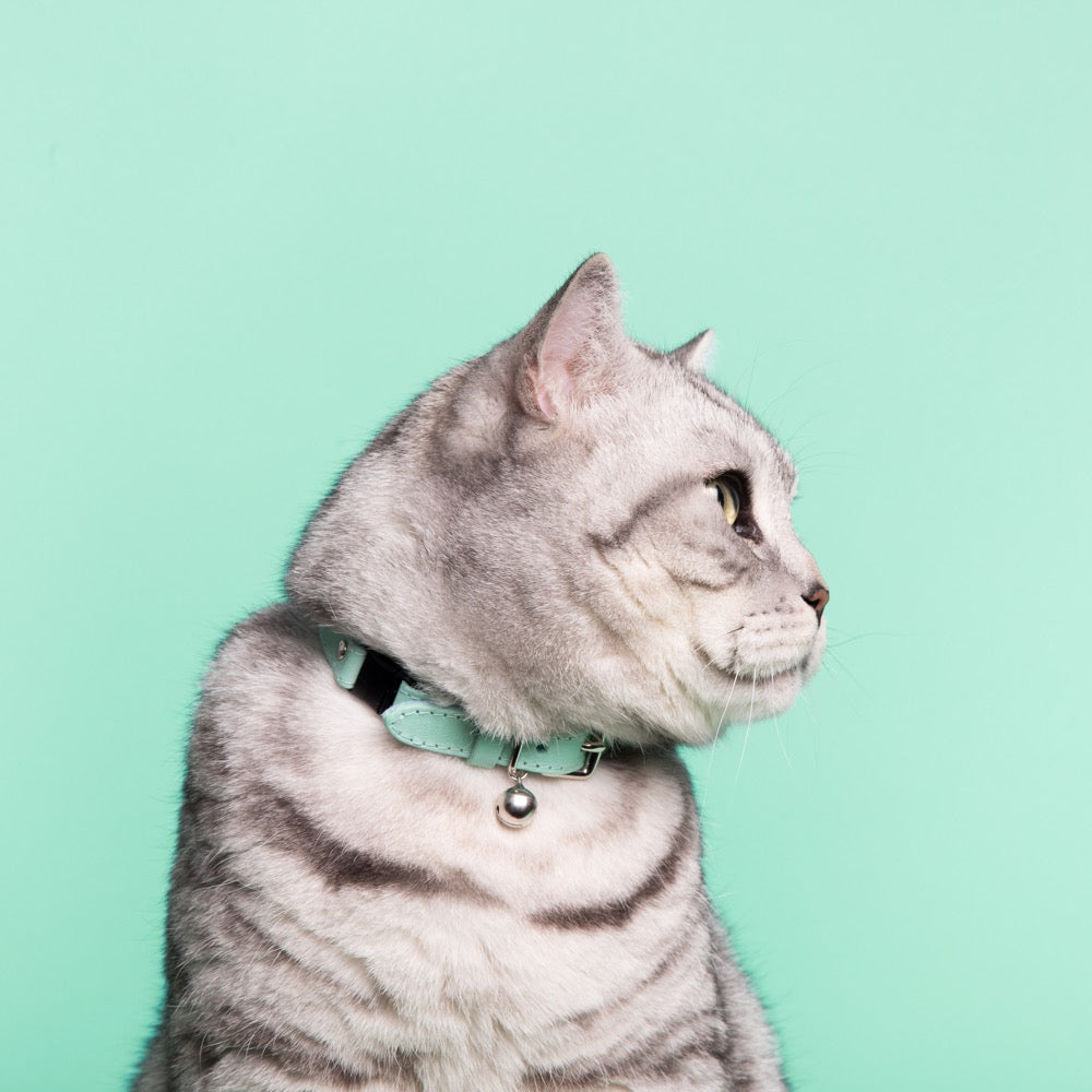 [product _vendor] Mint Green Leather Cat Collar - STYLETAILS