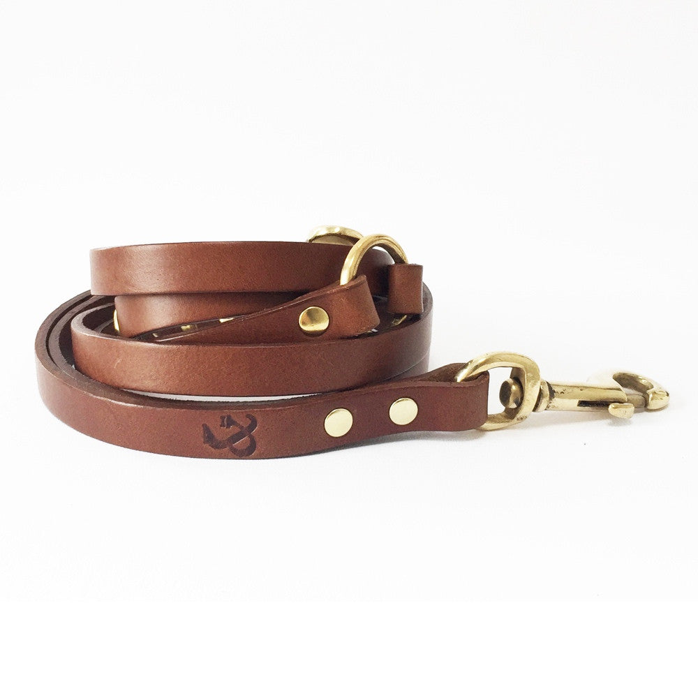 Long Leather Dog Lead
