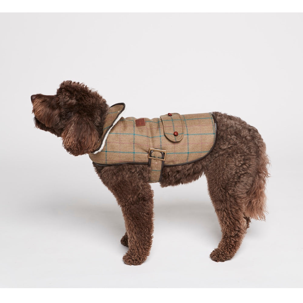 [product _vendor] Grouse Moor Dog Coat – Beige / Blue Check - STYLETAILS