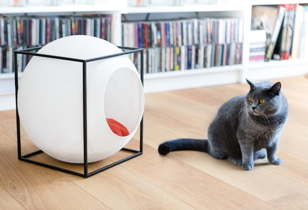 The Cat Cube - Ivory