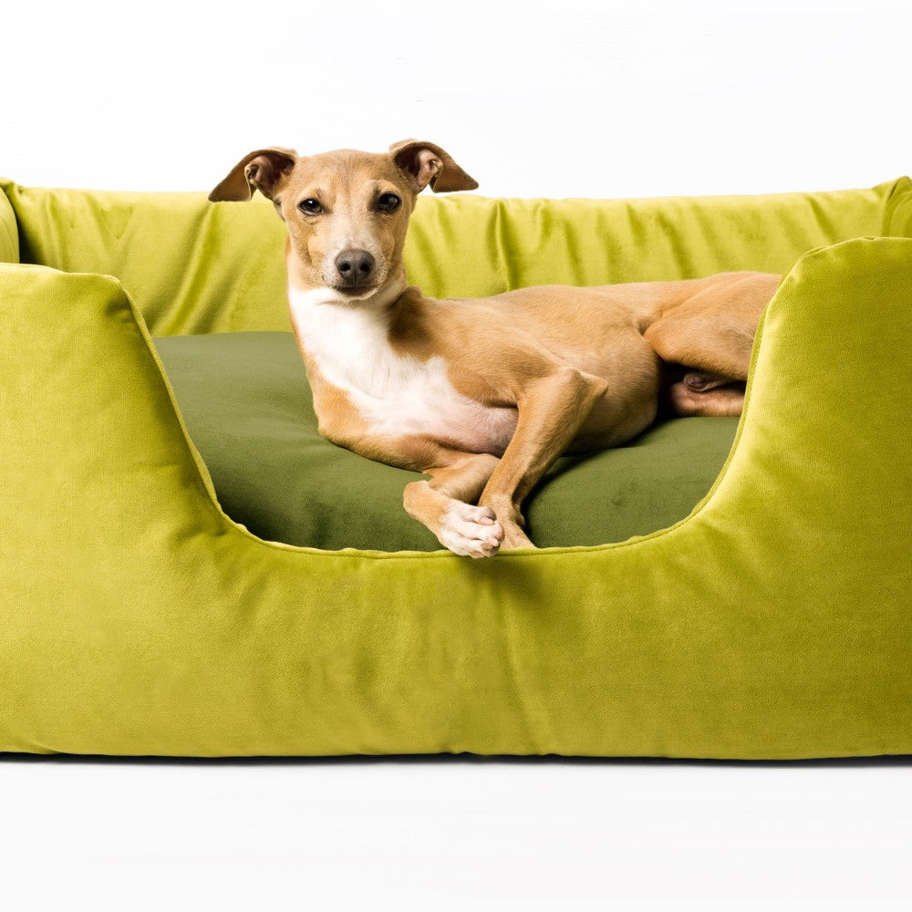 Deeply Dishy Dog Bed - Velour