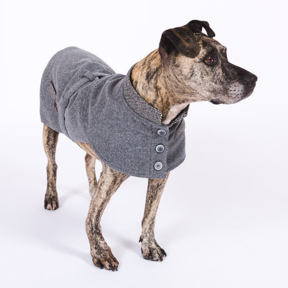 Berry Wool Winter Dog Coat Happystaffy.me