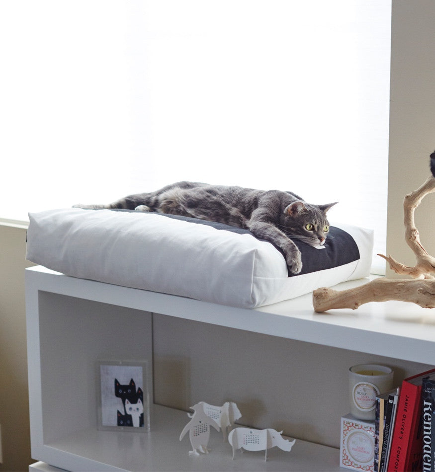 PADI Pillow Cat Bed