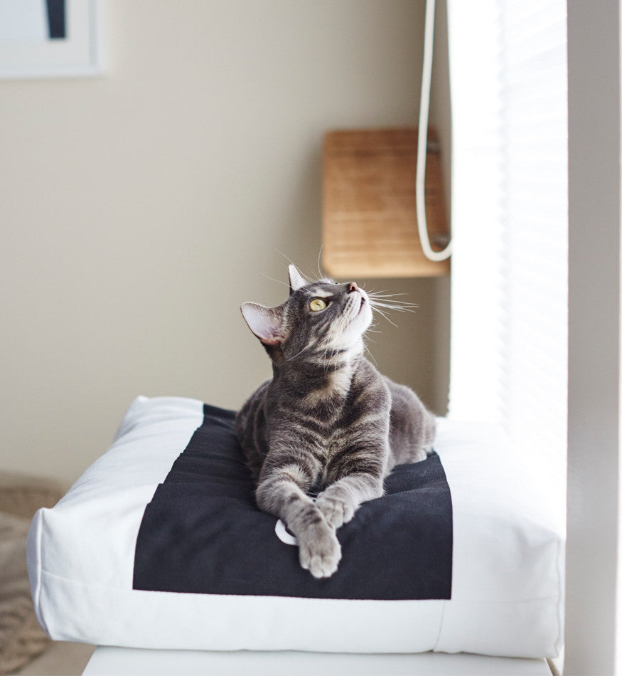 [product _vendor] PADI Pillow Cat Bed - STYLETAILS