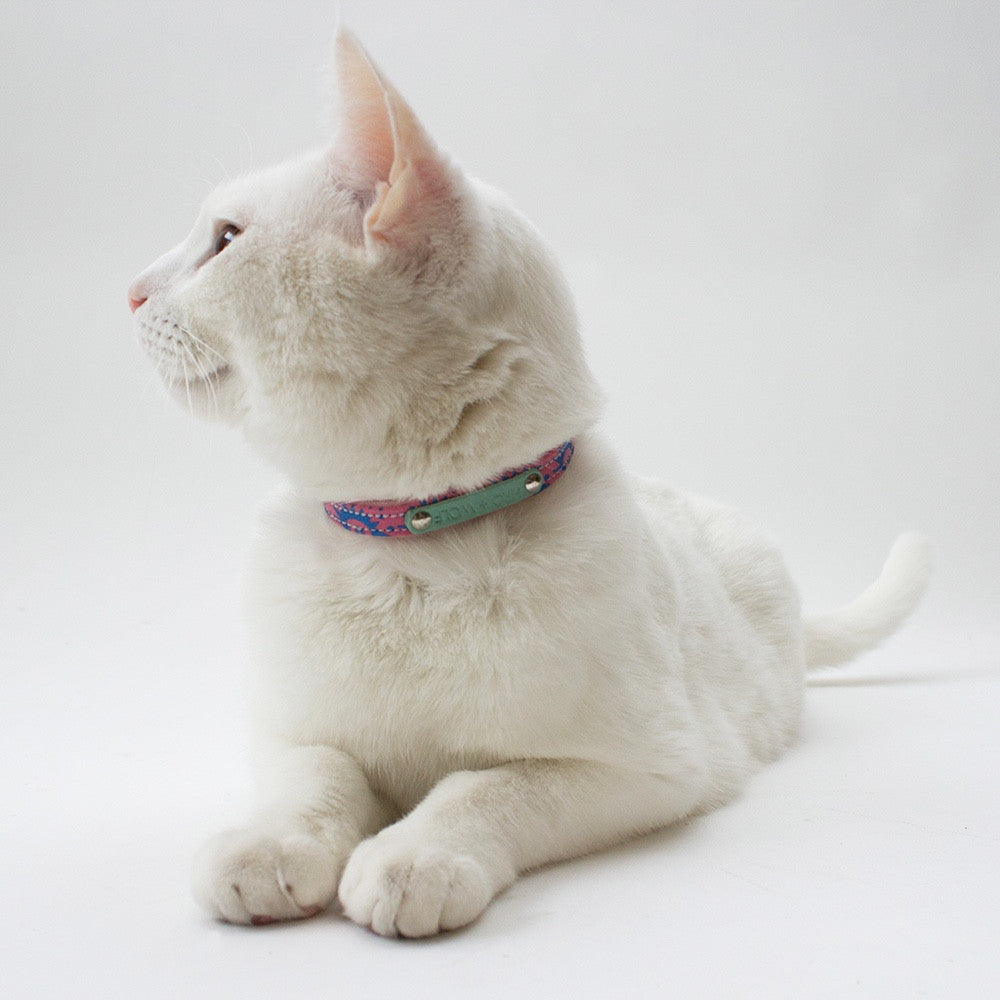 Nebula Cat Collar Hiro Wolf