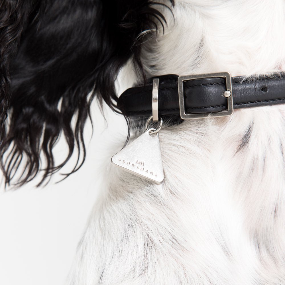 [product _vendor] London Leather Dog Collar - STYLETAILS
