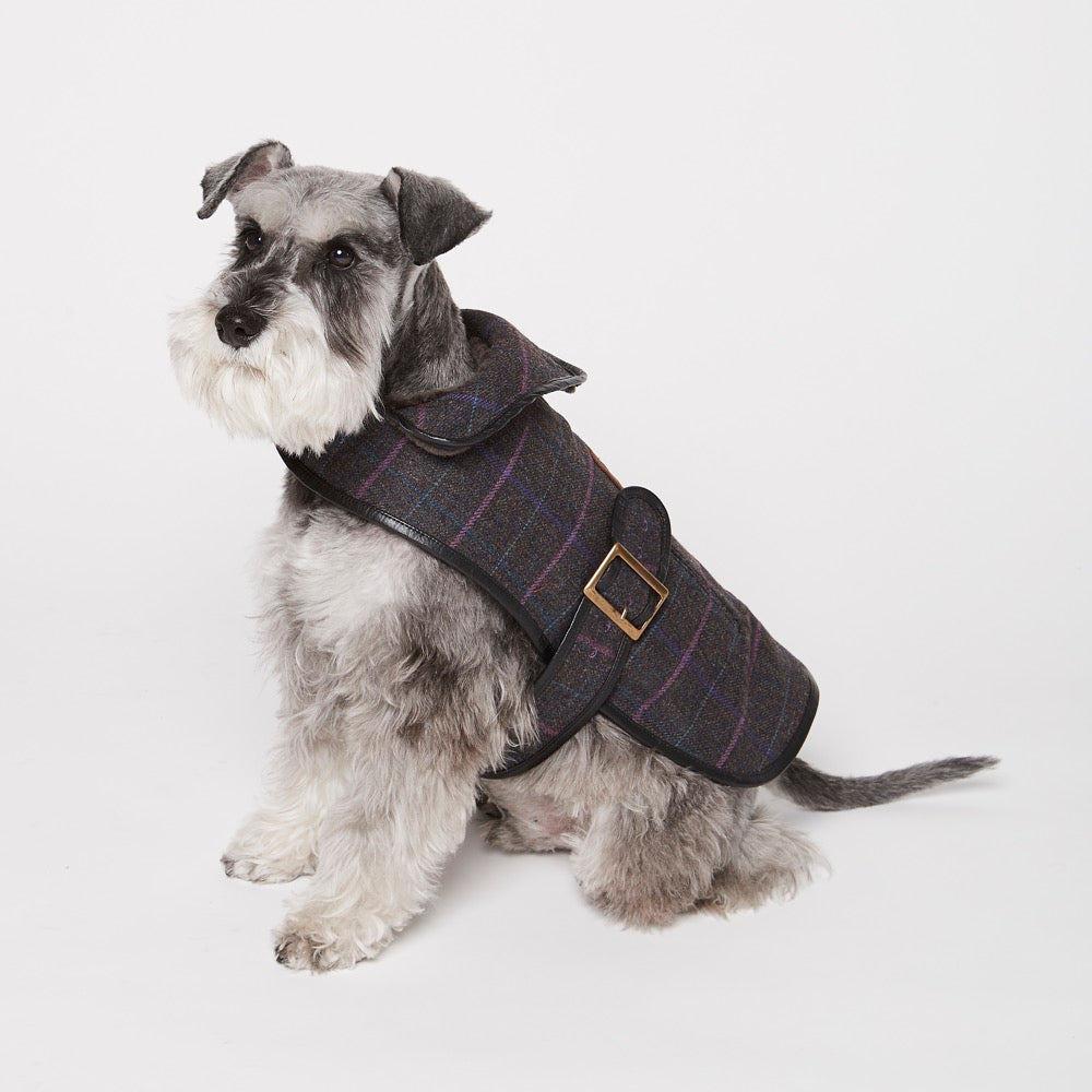 [product _vendor] Grouse Moor Dog Coat – Purple with Lilac / Blue Check - STYLETAILS