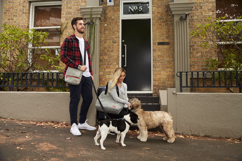 Dog Tote Travel Bag TravelWags