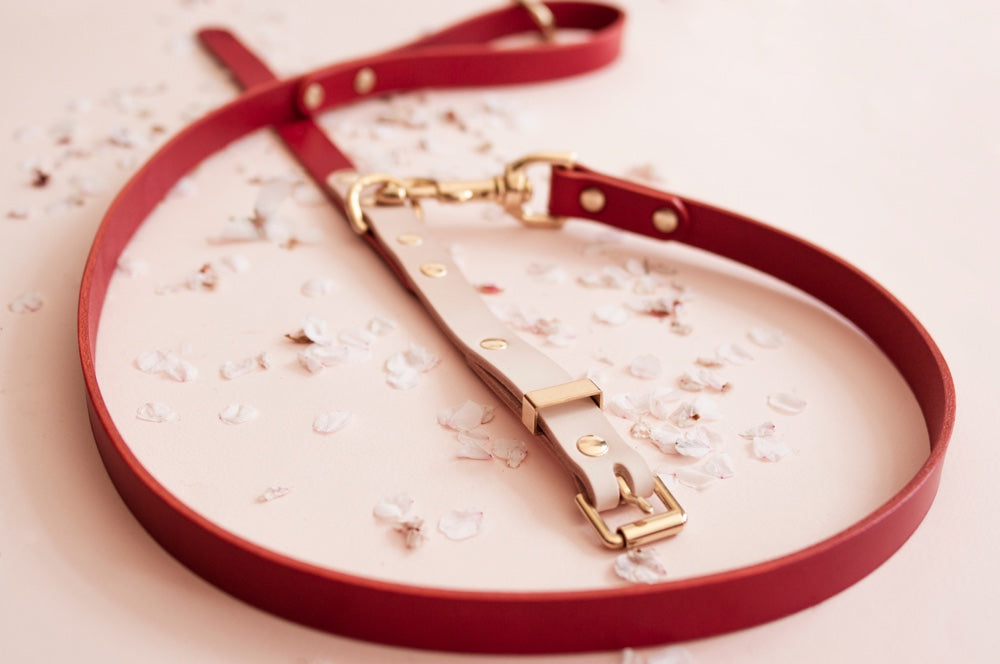 Two Tone Leather Dog Collar Natural Red Vackertass
