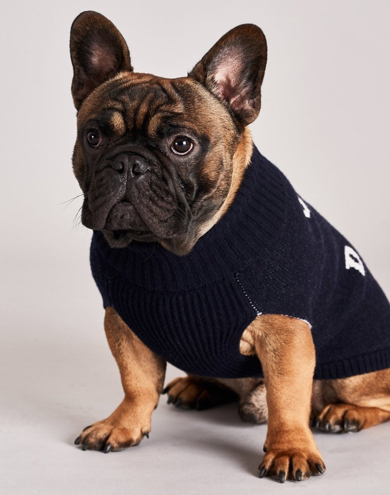 [product _vendor] Give A Damn Merino Wool Dog Jumper - STYLETAILS