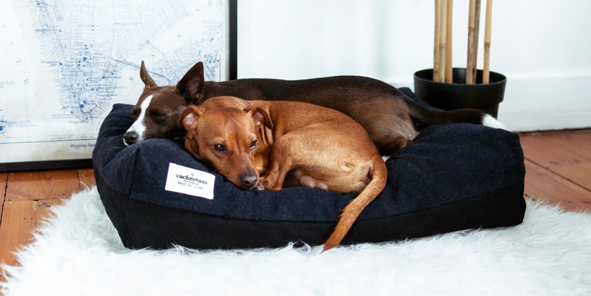 vackertass designer dog beds