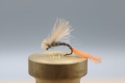 Adams CDC Emerger