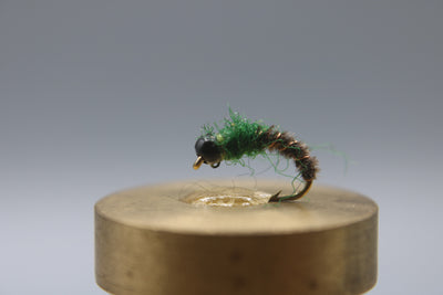 Bead Head Cased Caddis