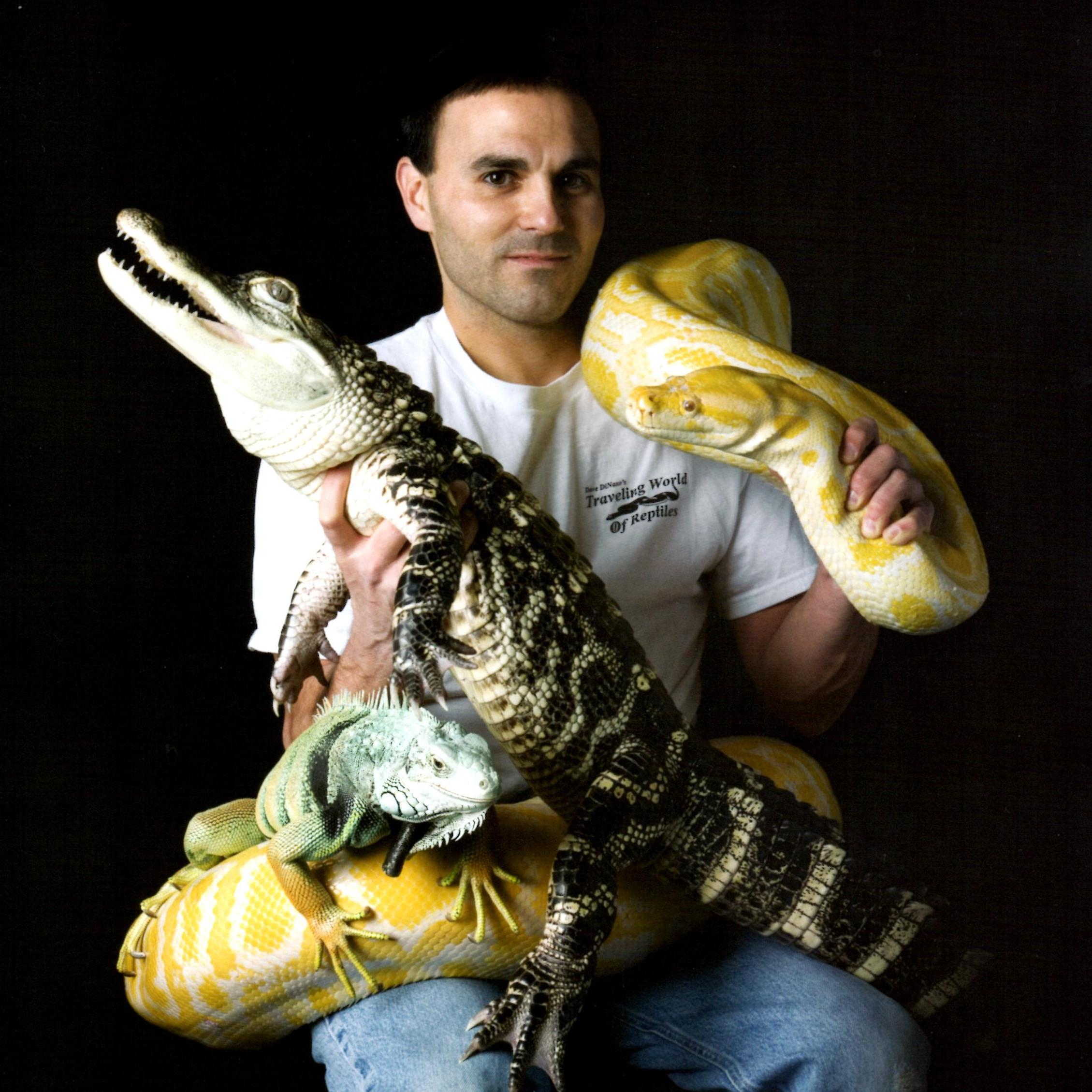 "Happy Hour: Dave DiNaso's ""Traveling World of Reptiles"" 