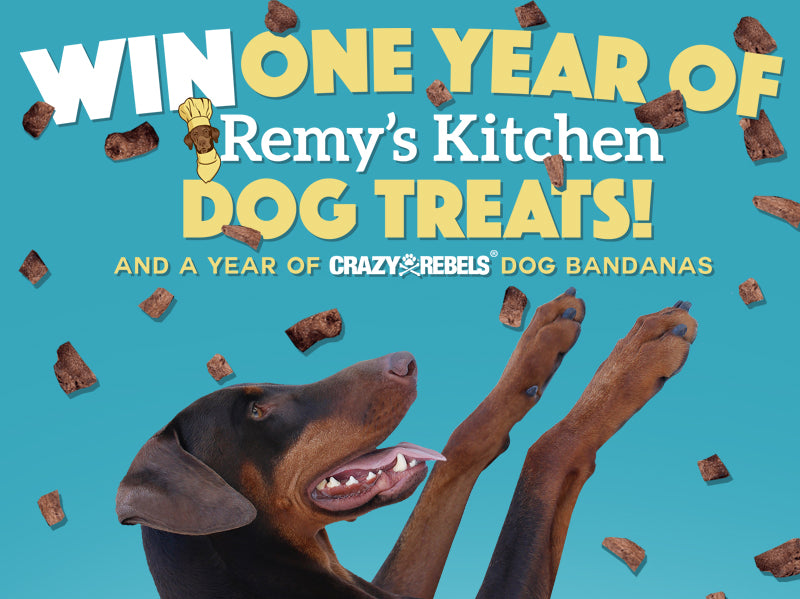 WIN A Year of Treats & Style!