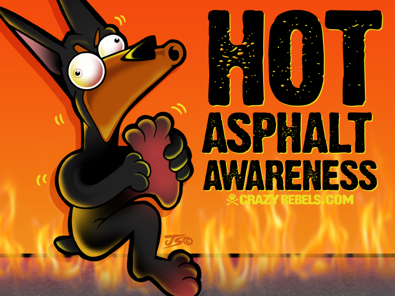 Hot Asphalt Awareness For Dogs