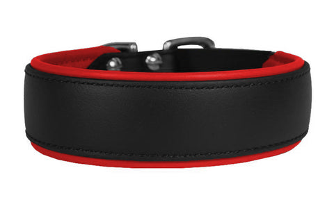 Kyon Padded Collar