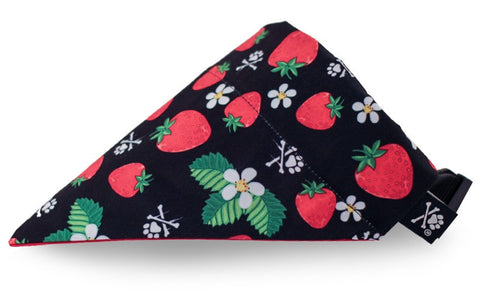 Strawberry Fields Bandana Collar