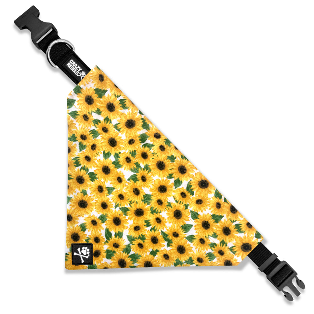 Sunflower Bandana Collar