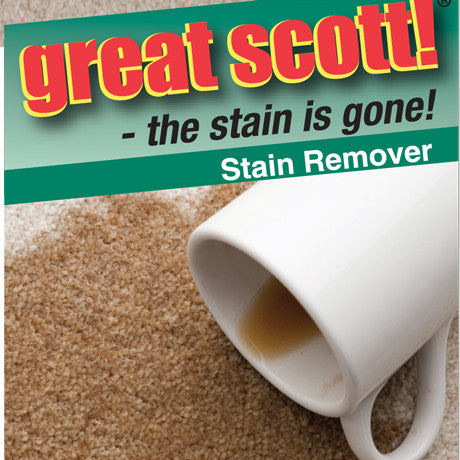 Carpet Stain Cleaner - Great Scott