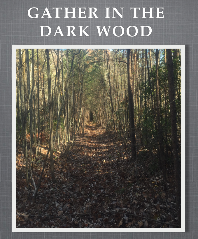 Gather in the Dark Wood - SEE PURCHASE OPTIONS