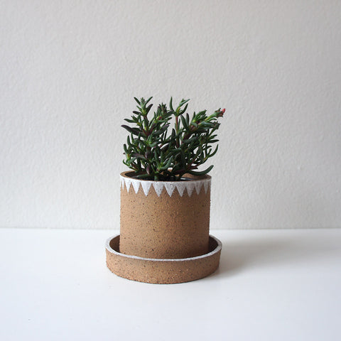 Speckled Flag Mini Planter