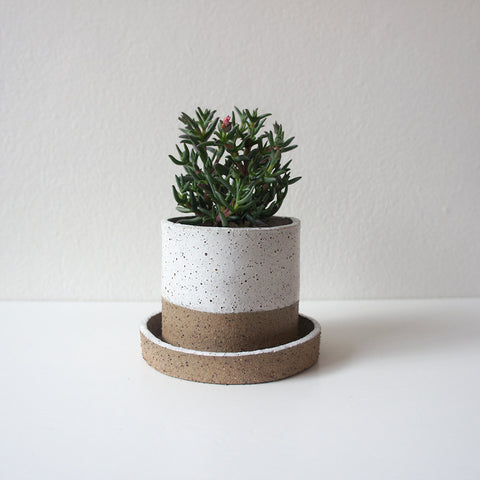 Two Tone Speckled Mini Planter