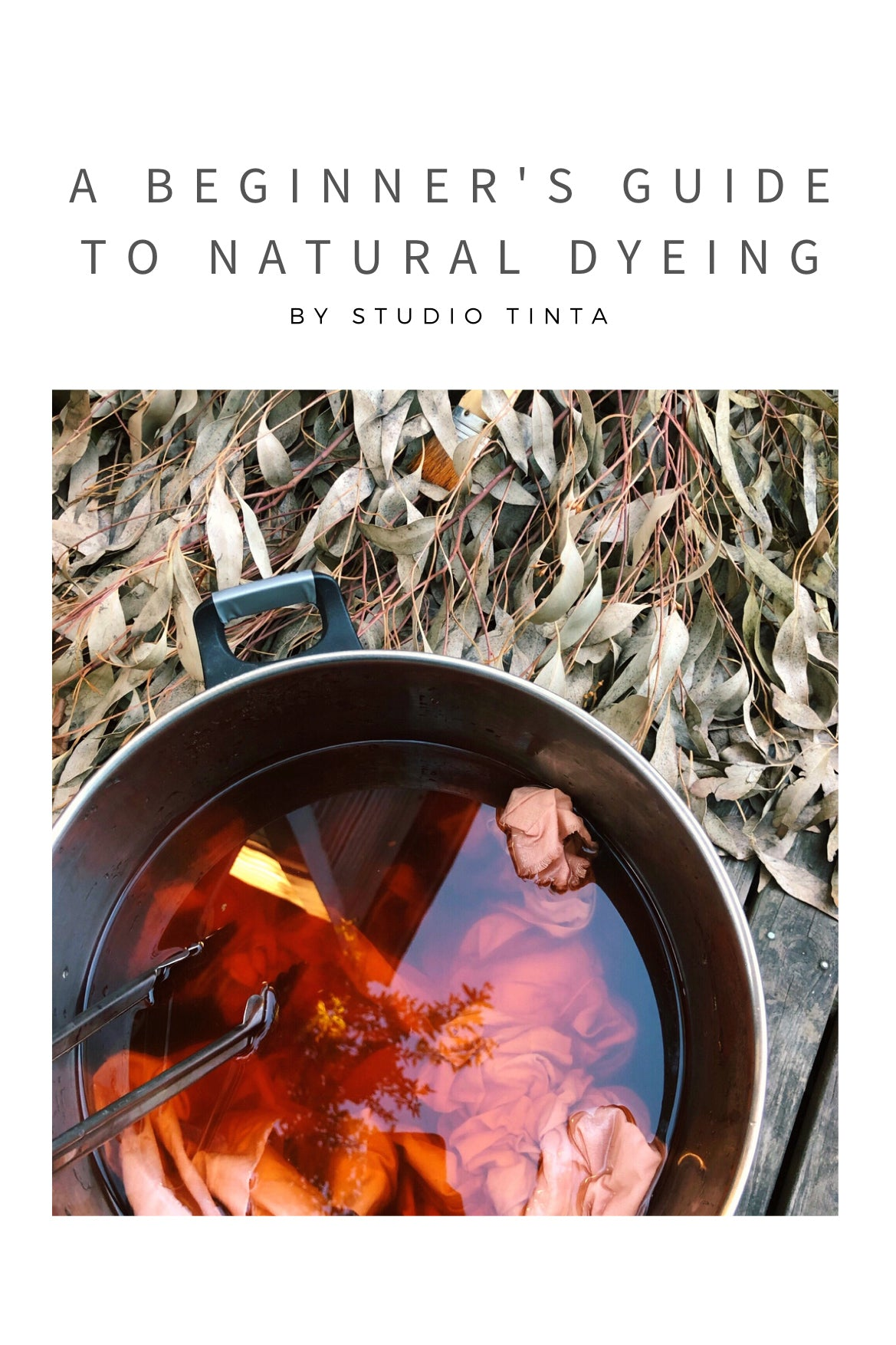 Ebook Set: Mordants for Natural Dyes & A Beginner's Guide to Natural Dyeing